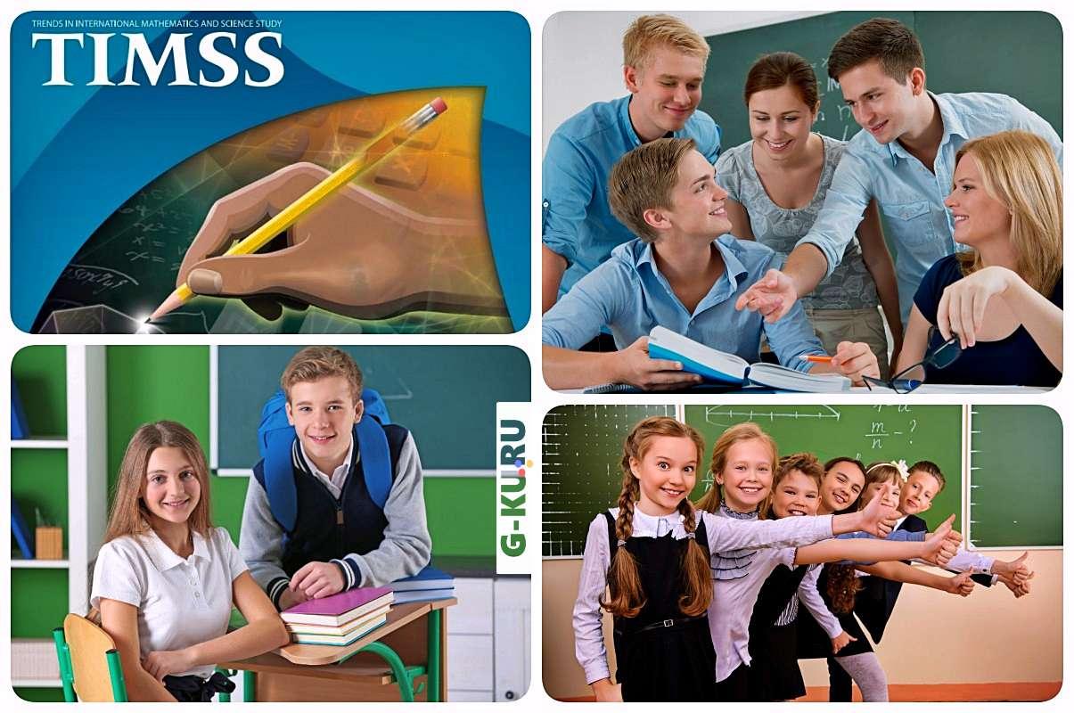 По результатам TIMSS российское образование на шестом месте среди лучших стран мира